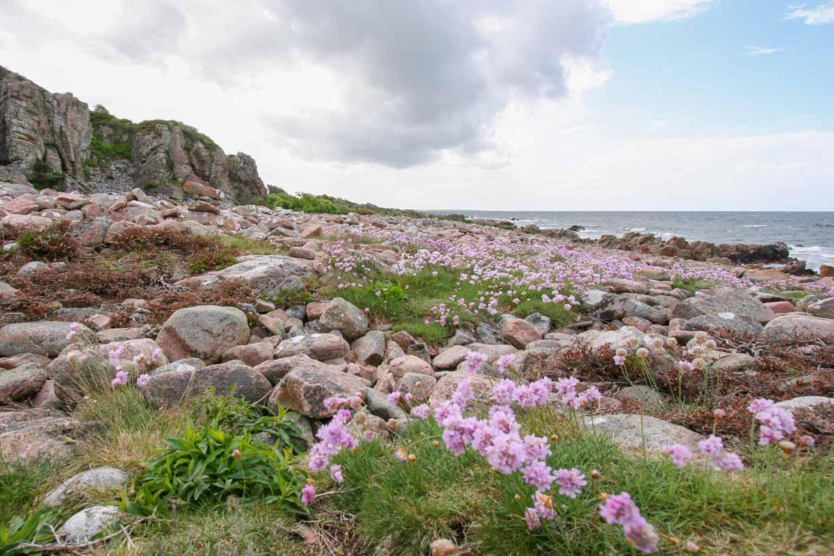 Doen in Skåne, Zweden: bezoek Hovs Hallar - Map of Joy