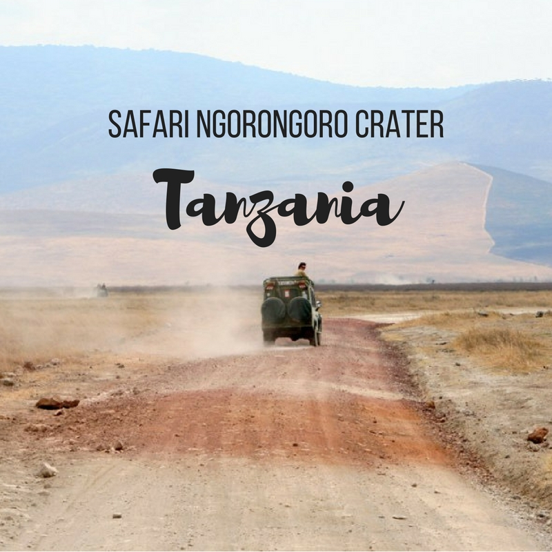 Safari Ngorongoro Crater, Tanzania - Map of Joy