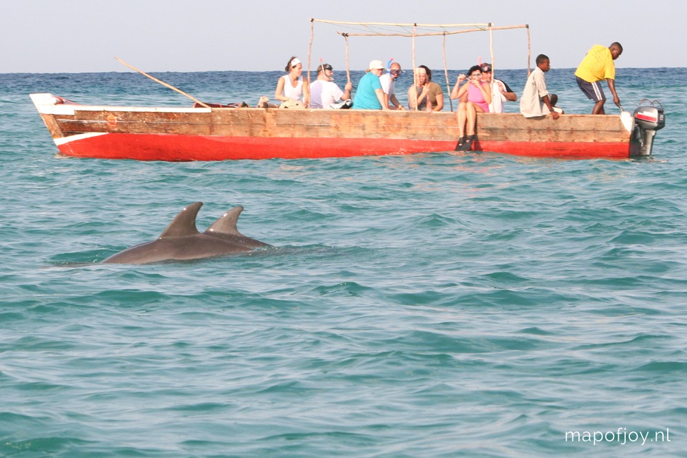 Travel report: swimming with wild dolphins on Zanzibar, Tanzania - Map of Joy