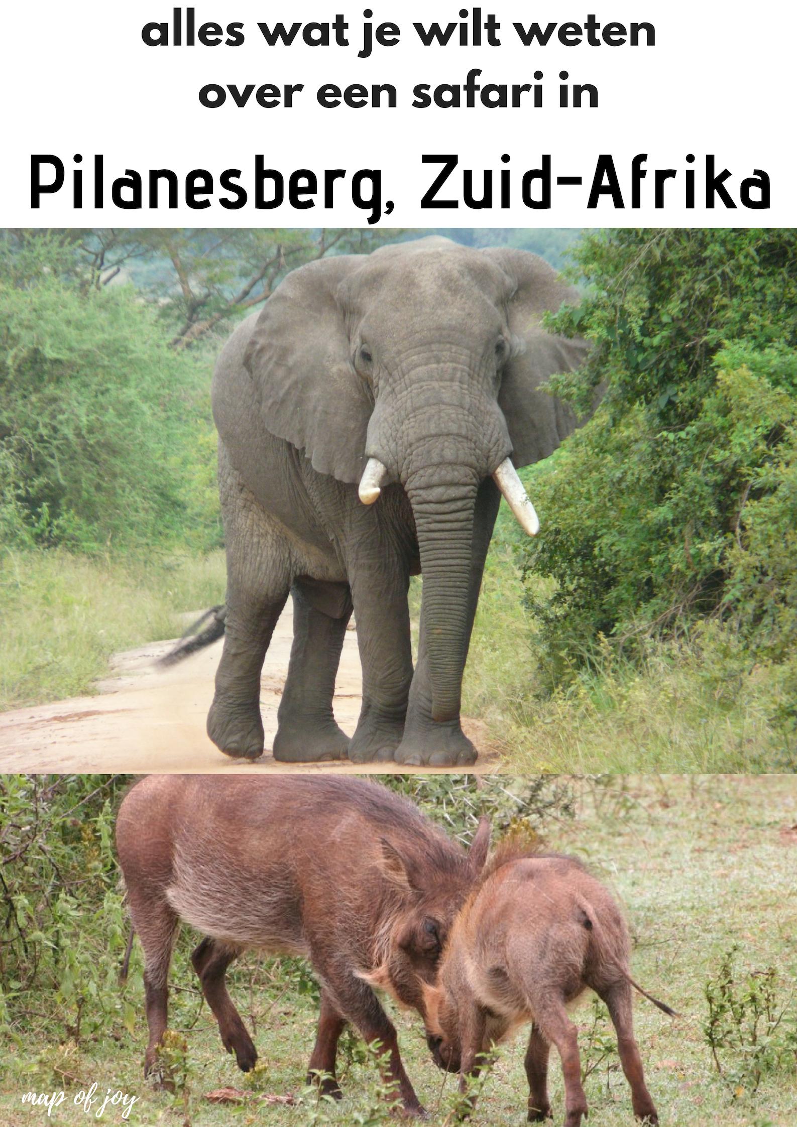 Alles over een safari in Pilanesberg, Zuid-Afrika - Map of Joy