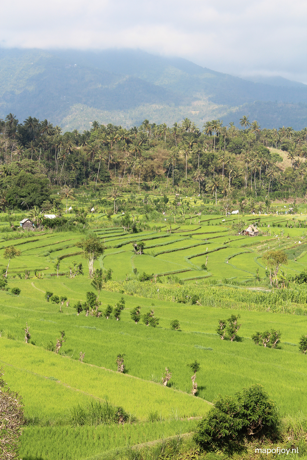 30x Bali bliss, 30 pictures by Map of Joy