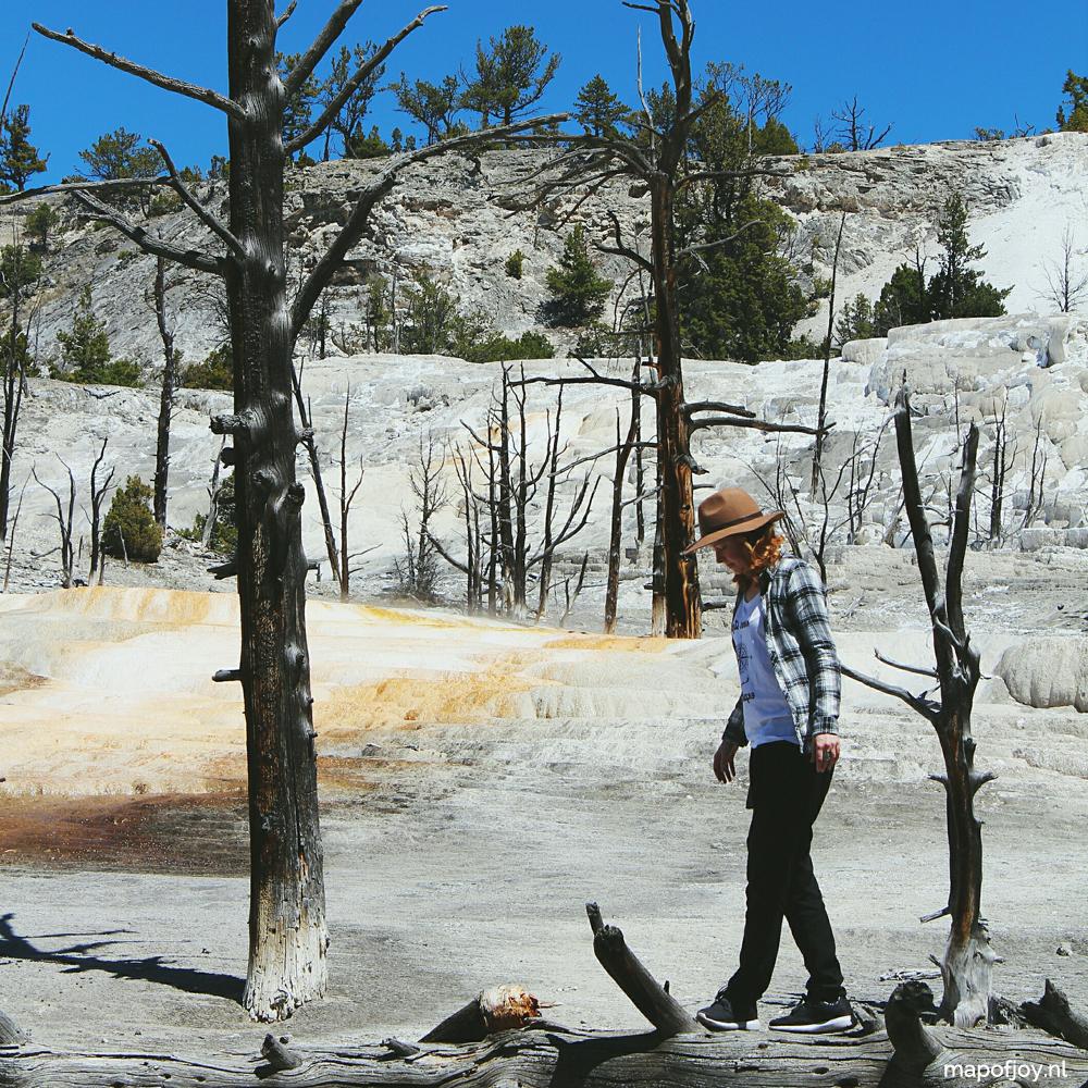 Mammoth Hot Springs, Yellowstone, USA - Map of Joy