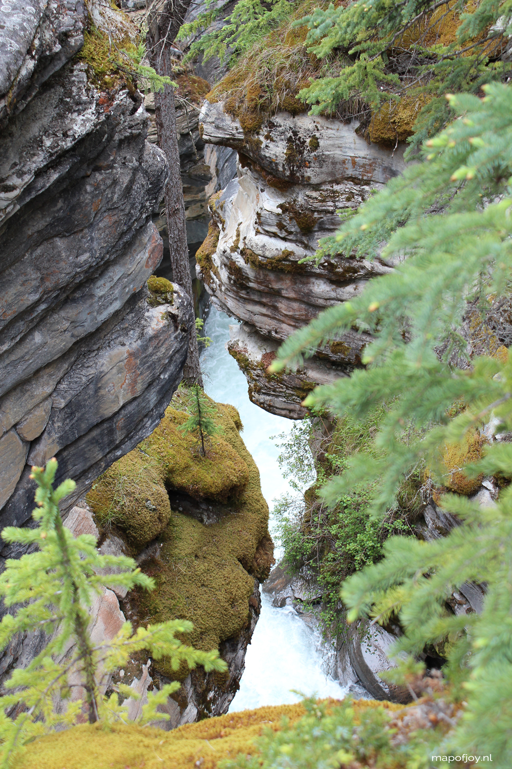 Athabasca Falls, Jasper NP, Alberta, Canada - travel report by Map of Joy