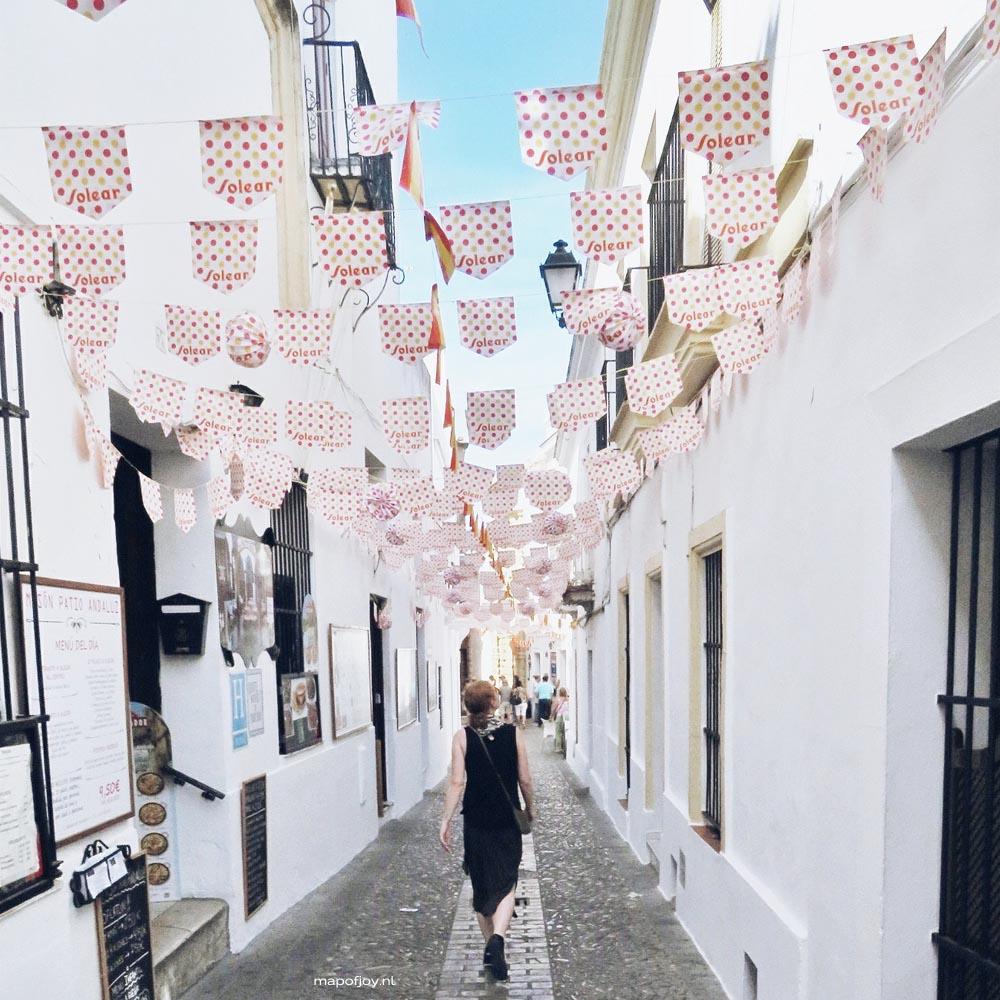 Arcos de la Frontera, Andalusie, Spanje - Map of Joy