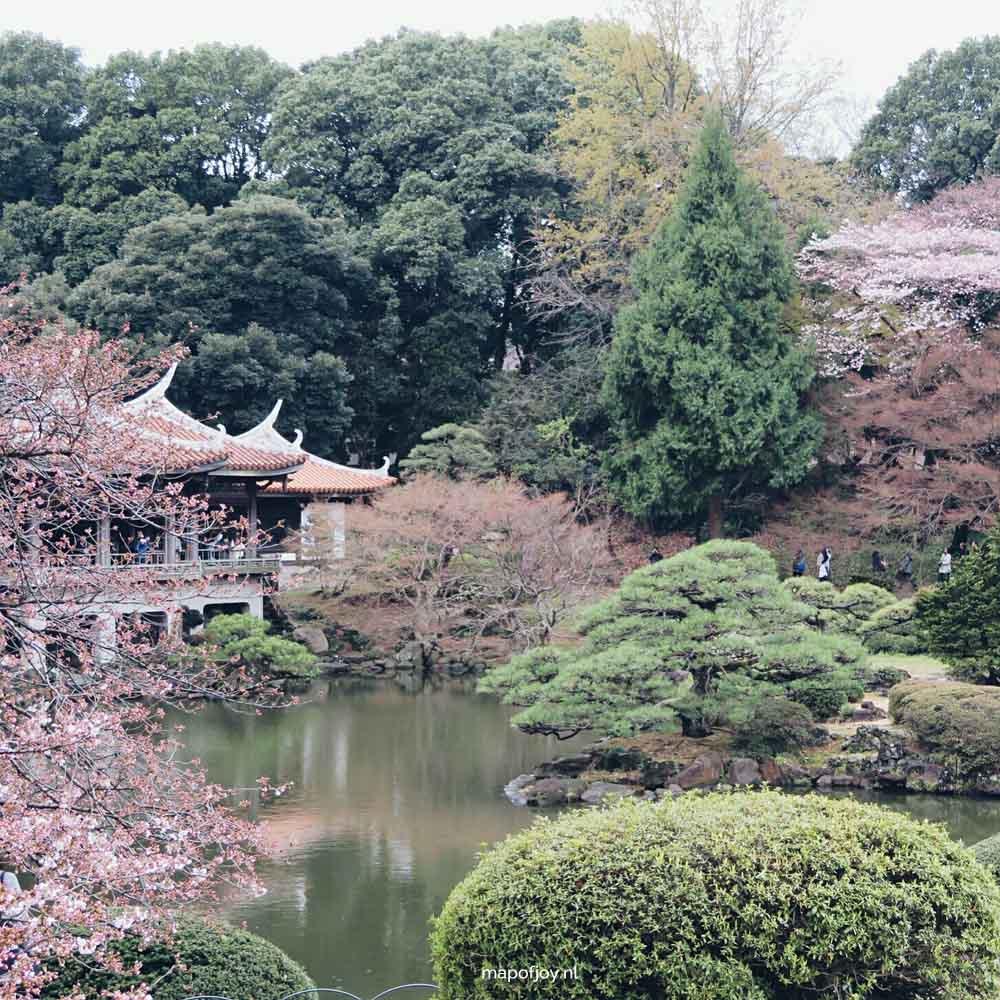 Shinjuku Gyoen National Garden, cherry blossom tree, Tokyo, Japan - Map of Joy
