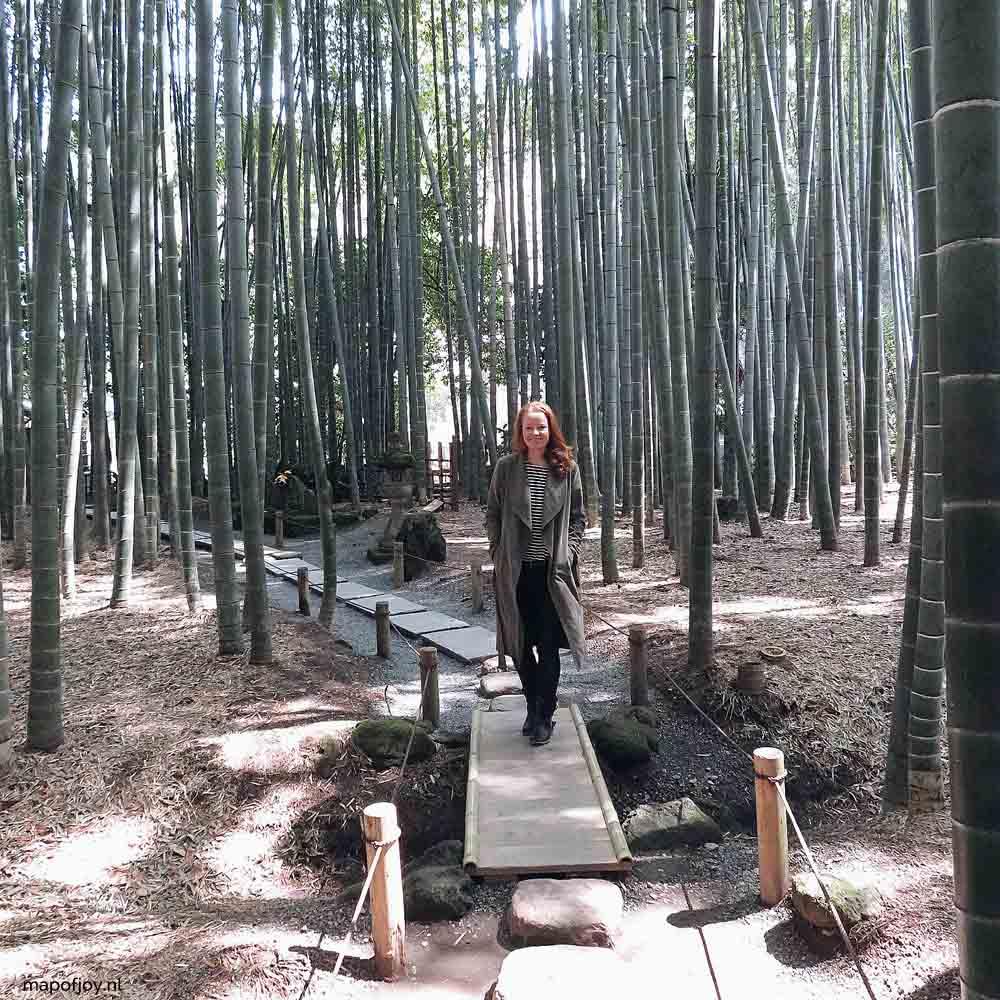 Bamboo forest Kamakura, Japan - Map of Joy