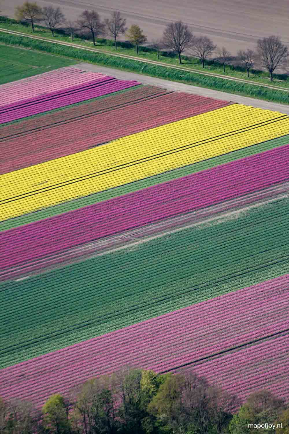 Tulpenfestival, Flevoland, Holland, luchtfoto - Map of Joy