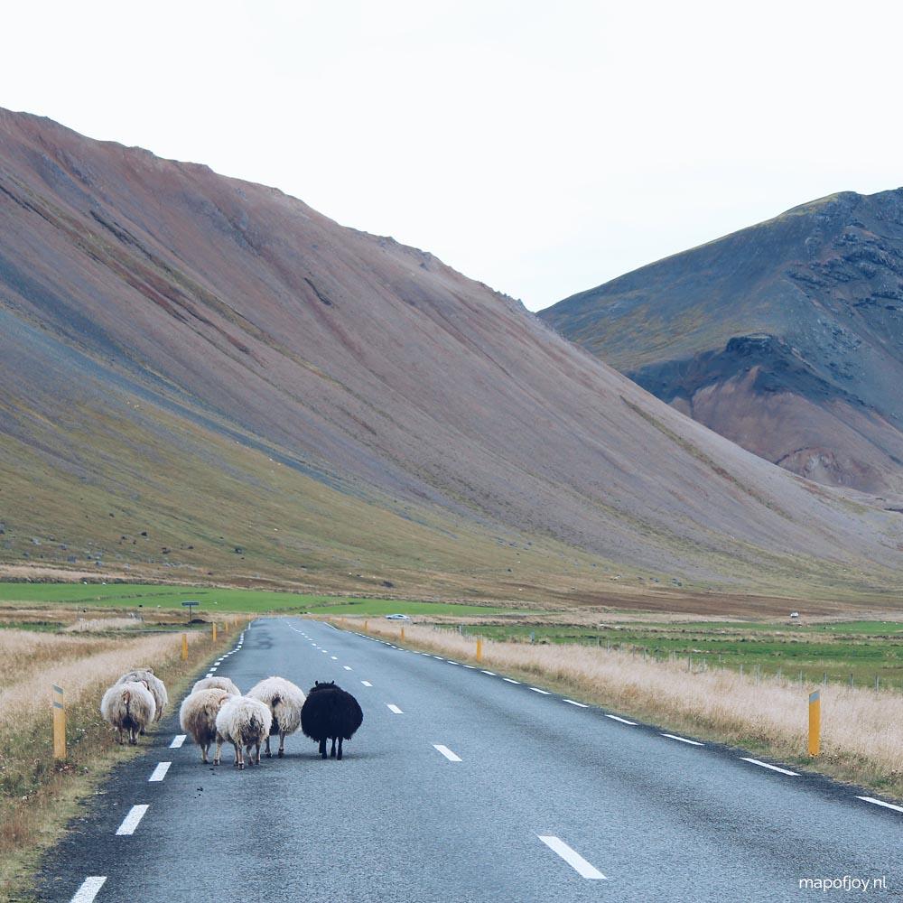 Autorijden in IJsland? Lees deze handige 10 tips!