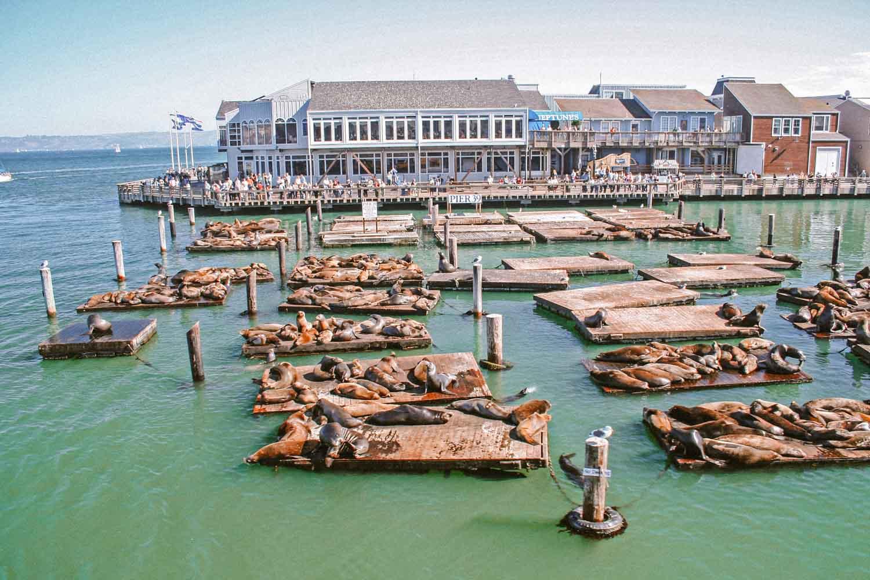 Fisherman's Warf, zien in San Francisco - Map of Joy