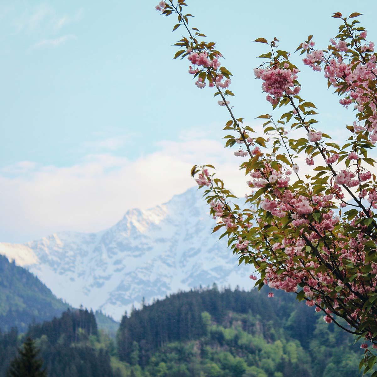 Innertkirchen in de lente, Zwitserland - Map of Joy