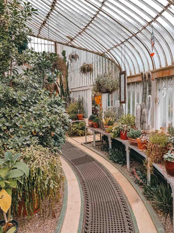 Botanic Gardens, 12x gratis bijzondere dingen doen in Belfast - Map of Joy