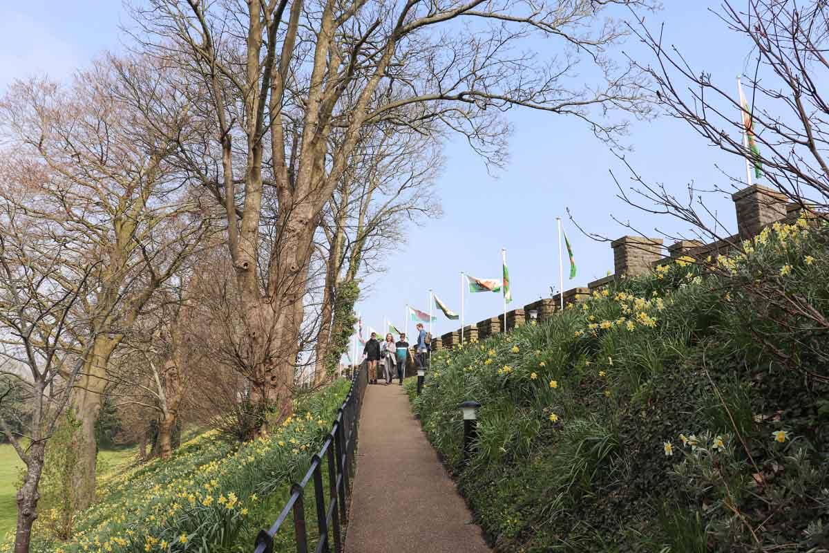 Alles wat je wilt weten over Cardiff Castle bezoeken - Map of Joy