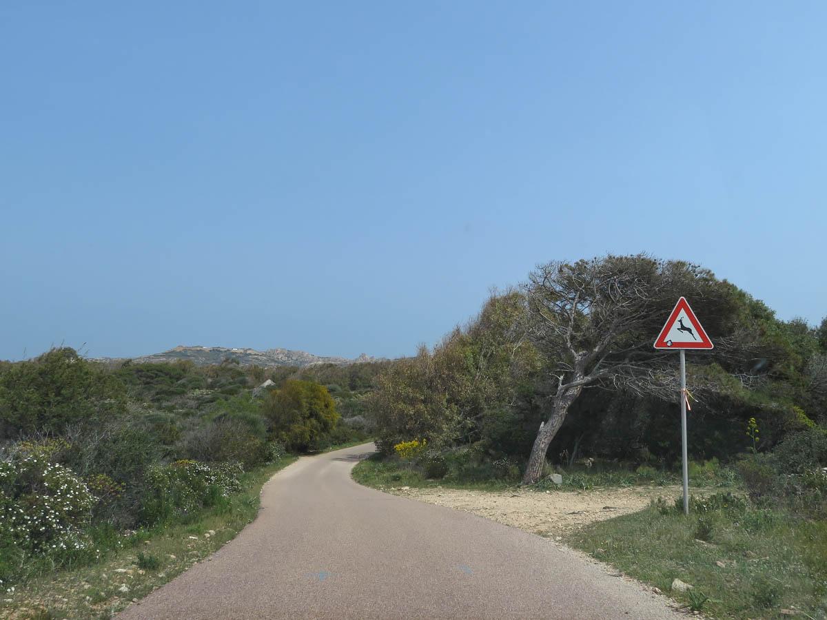Dagtrip La Maddalena en Caprera [alles wat je wilt weten] - Map of Joy