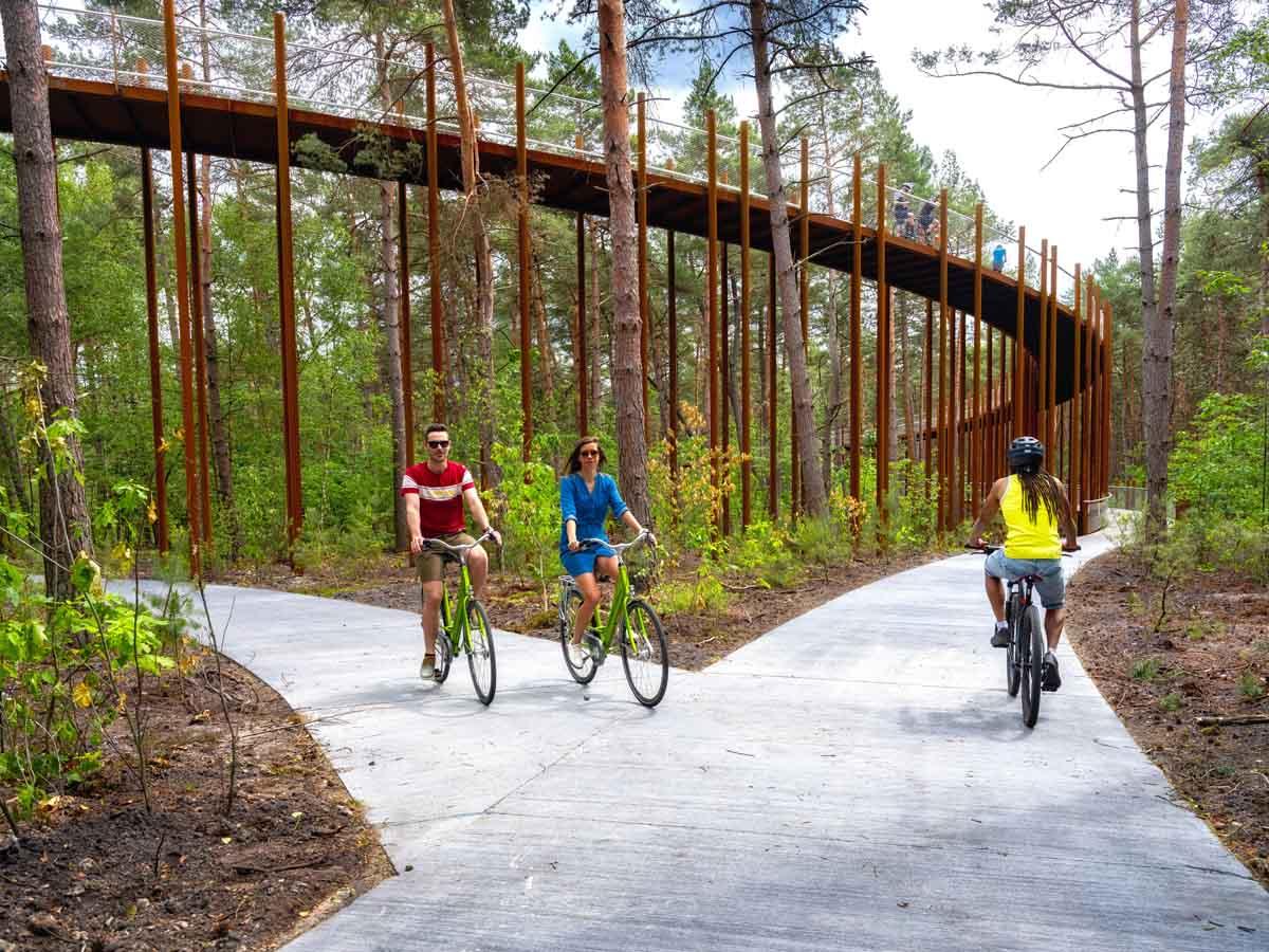 Fietsen door de bomen in Belgisch Limburg