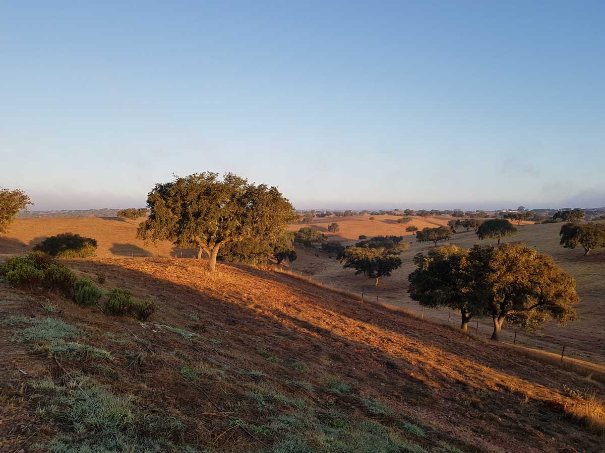 Alentejo, zonsopkomst - Map of Joy