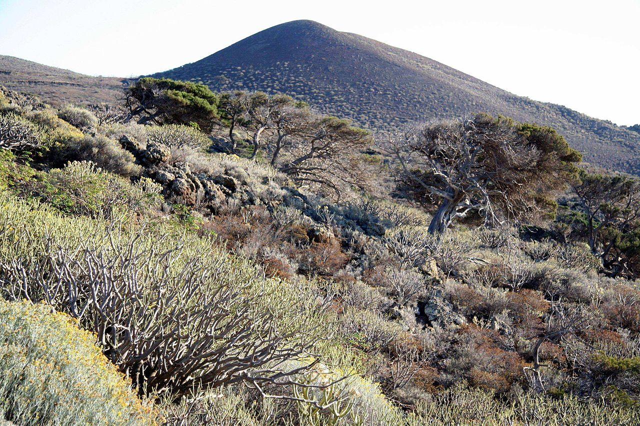 Het landschap van La Gomera