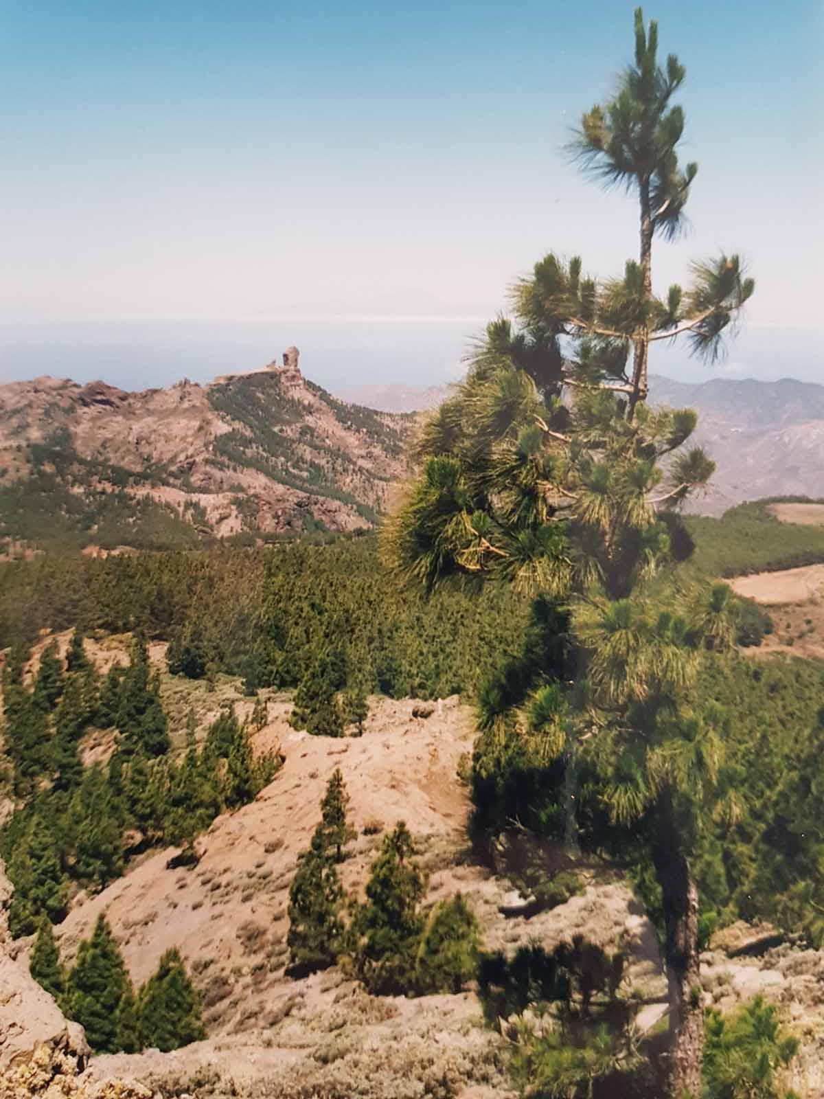 Roque Nublo rots op Gran Canaria