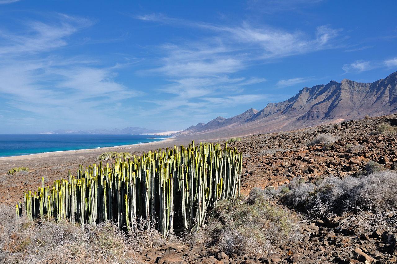 Landschap Fuerteventura