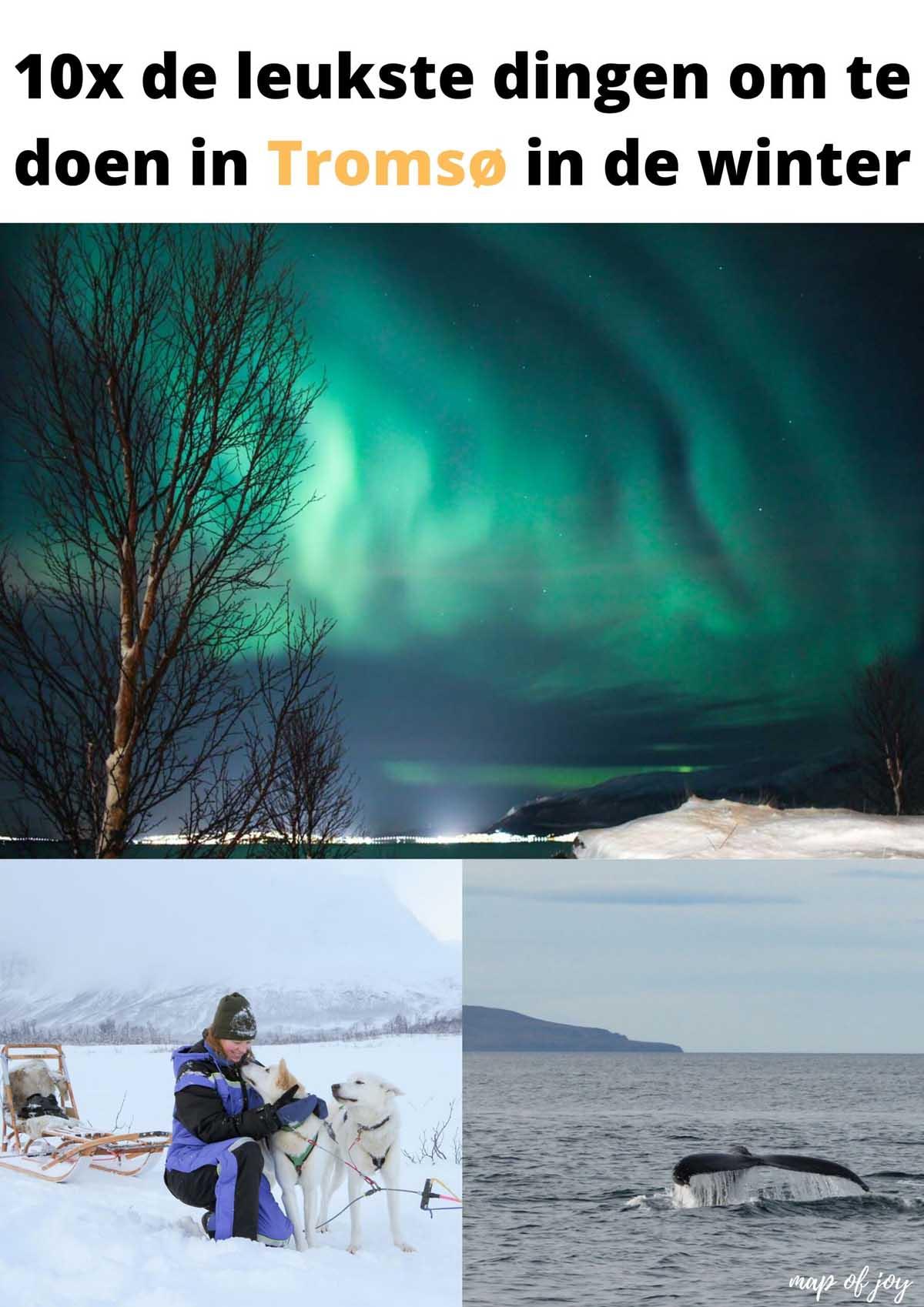 10x de leukste dingen om te doen in Tromsø in de winter - Map of Joy