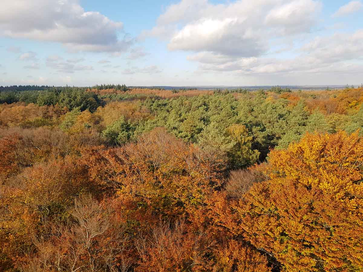 10x de mooiste Nationale Parken in Nederland, Zuid-Kennemerland, Utrechtse Heuvelrug De Kaap