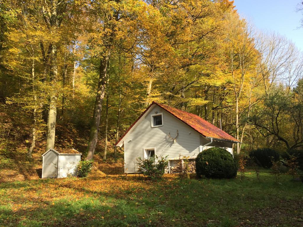 20x leuke accommodaties in de Harz
