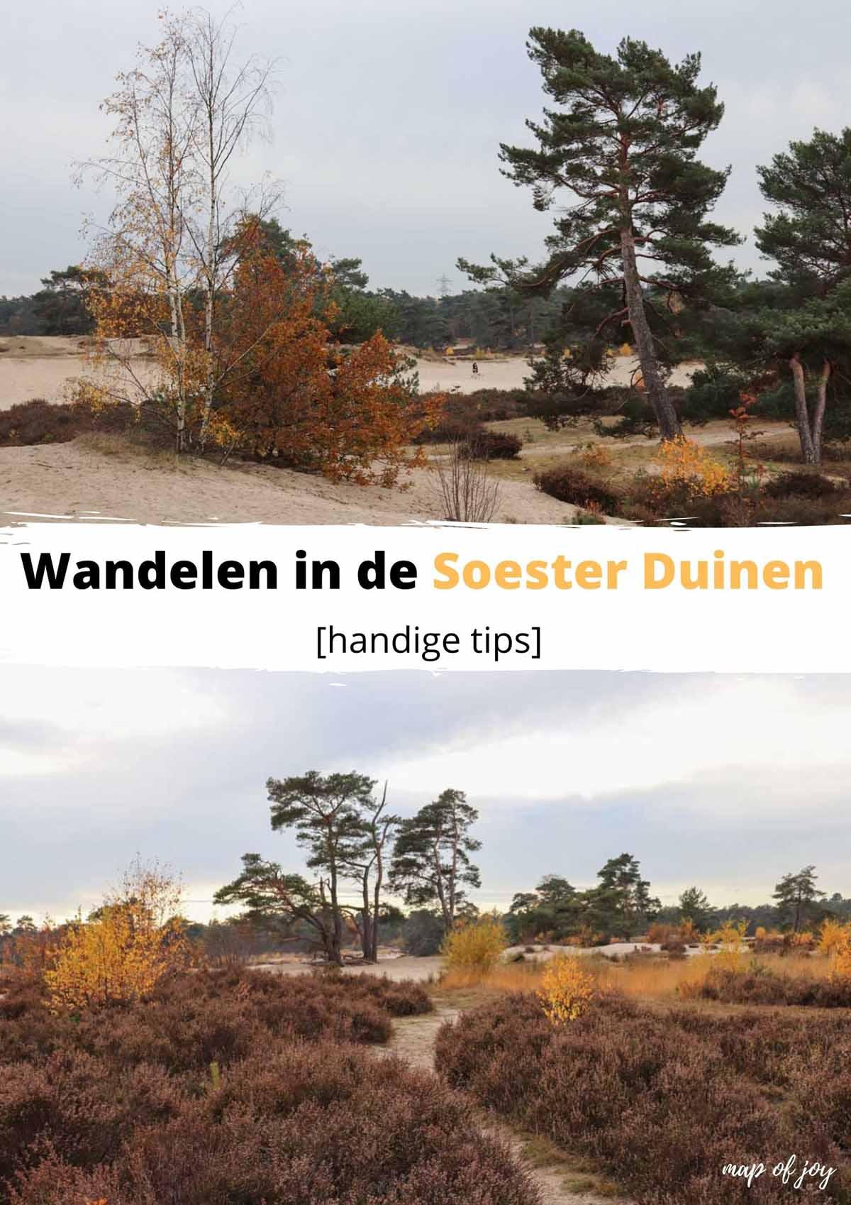Wandelen in de Soester Duinen