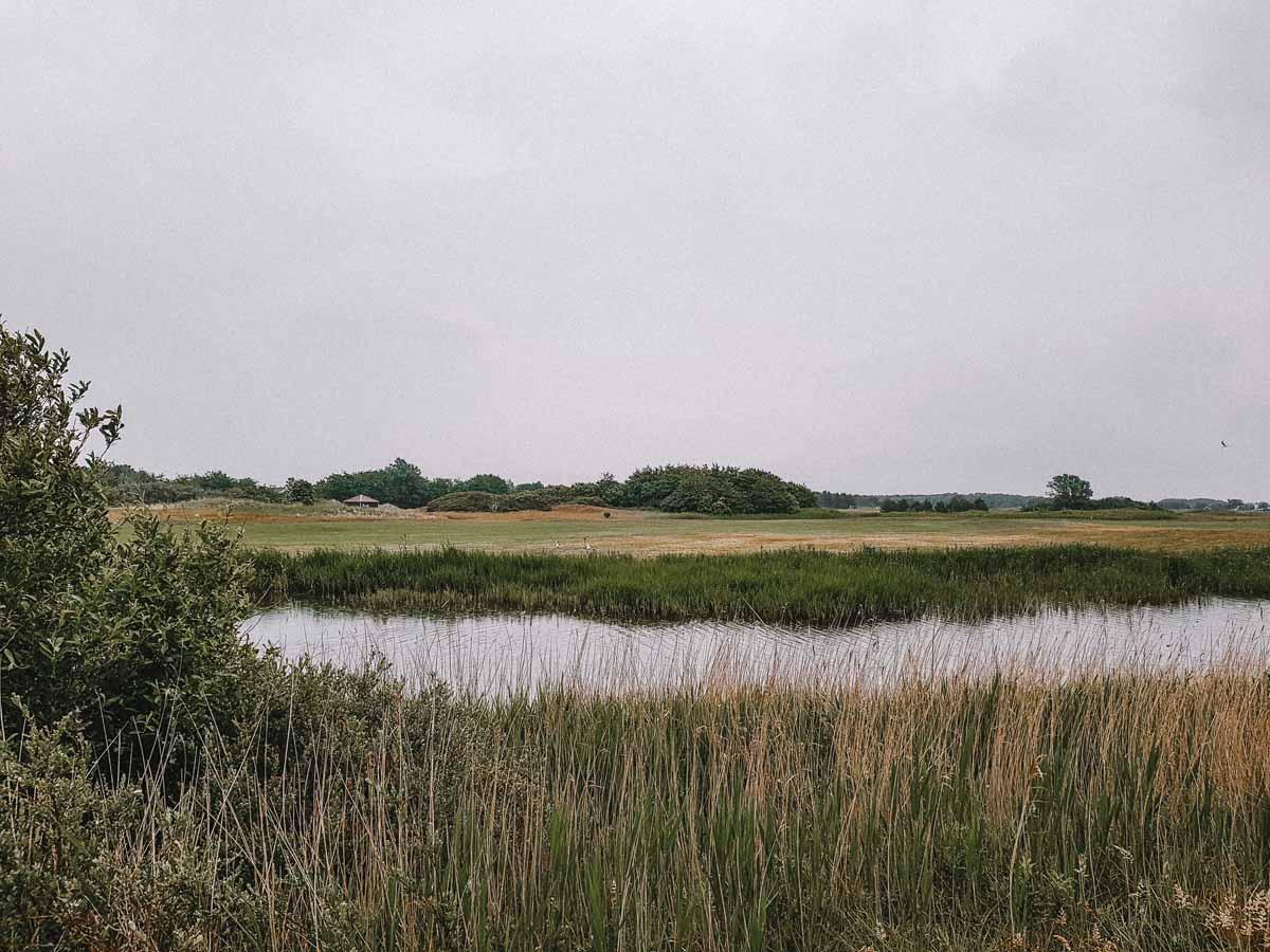 Wandelen op Texel? Dit zijn de 7 leukste wandelingen