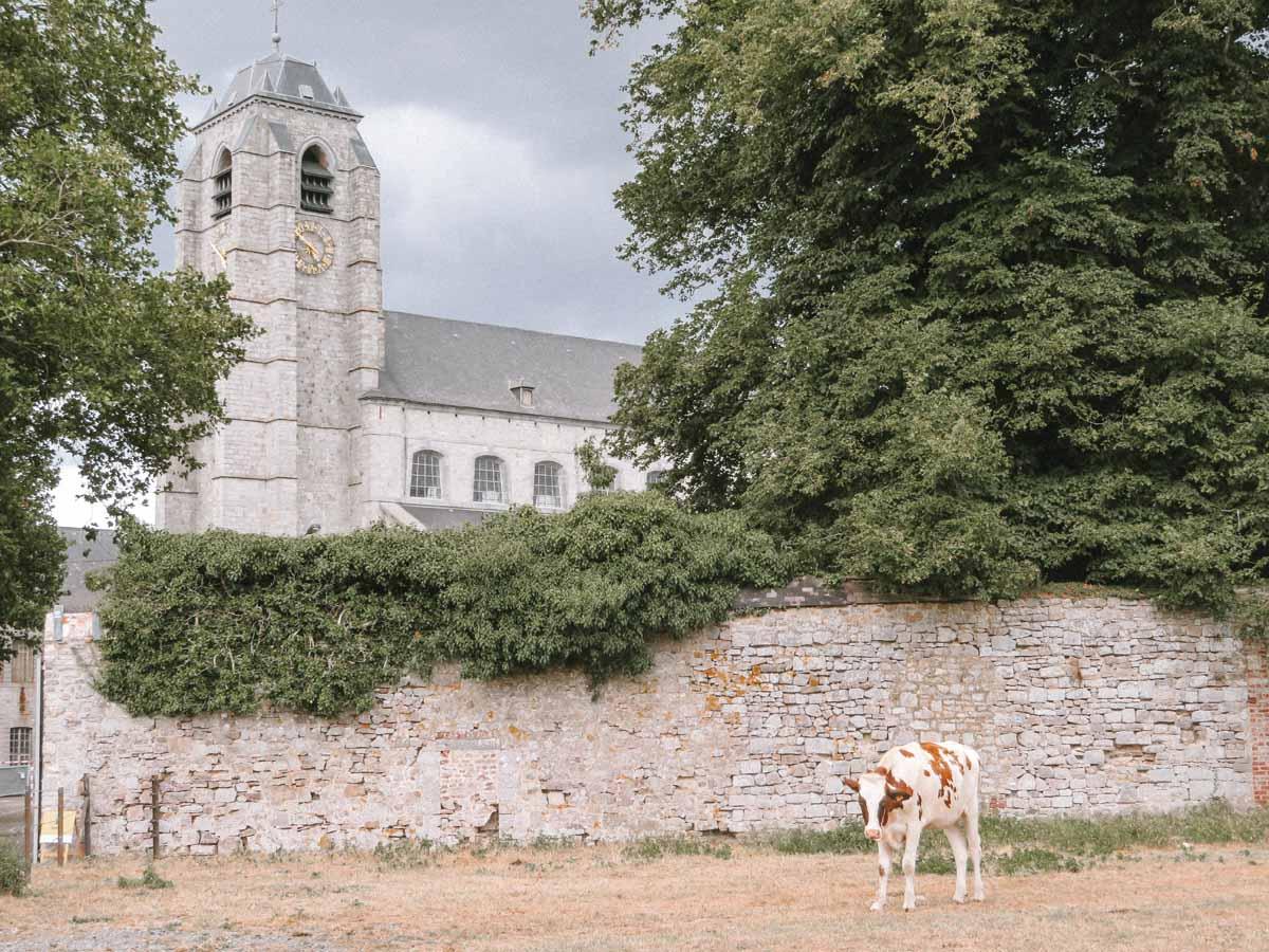 Abdij van Bonne-Espérance, kathedraal